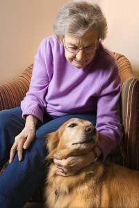 5 Benefits of Pet Therapy for Seniors